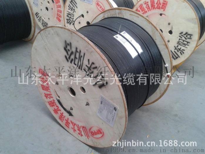 太平洋 室外非金屬阻燃光纜GYFTZY-4B1100865192