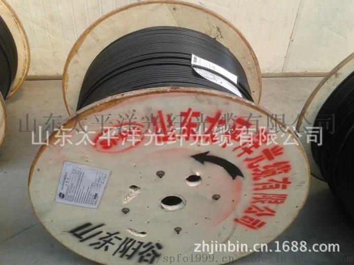 太平洋 室外非金屬阻燃光纜GYFTZY-4B1100865182