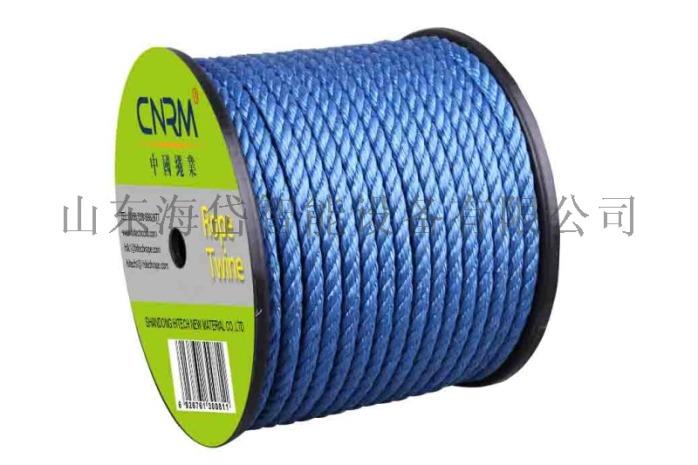 pp twisted rope 1.jpg
