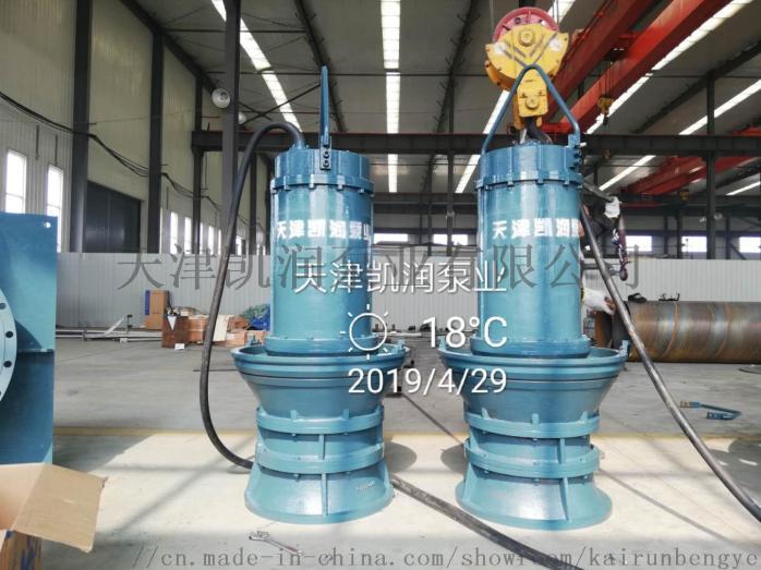 大型排灌用潜水轴流泵848275205
