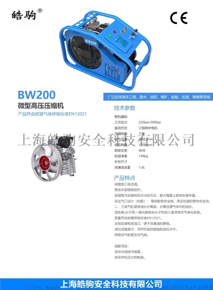 BW200.jpg