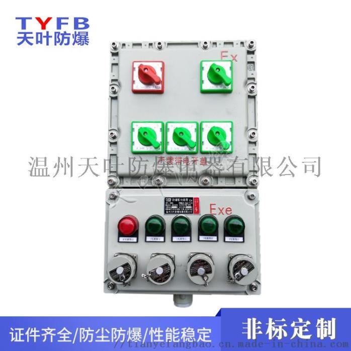 10C防爆照明动力配电箱832080302