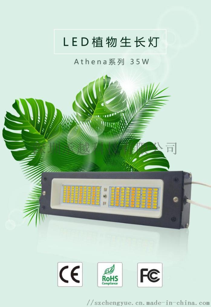 承越Athena系列35w植物灯_01.jpg
