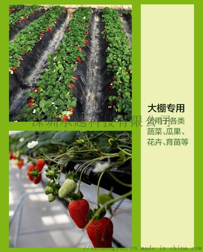 承越led植物生长灯大棚花卉瓜果种植补光灯厂家114492975