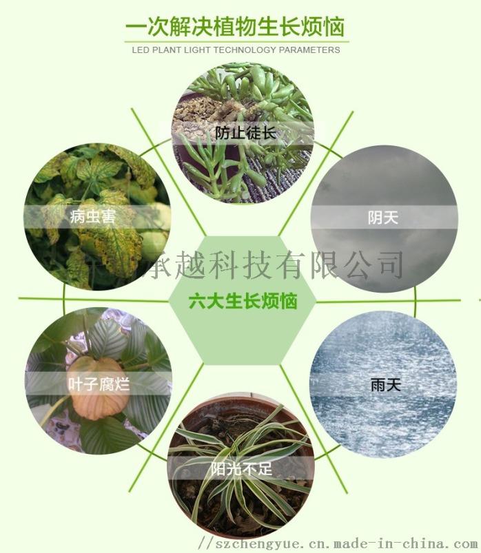 承越led植物生长灯大棚花卉瓜果种植补光灯厂家114493005