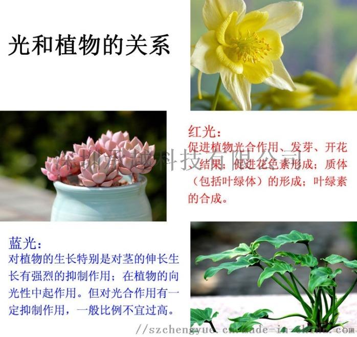承越led植物生长灯大棚花卉瓜果种植补光灯厂家114493015