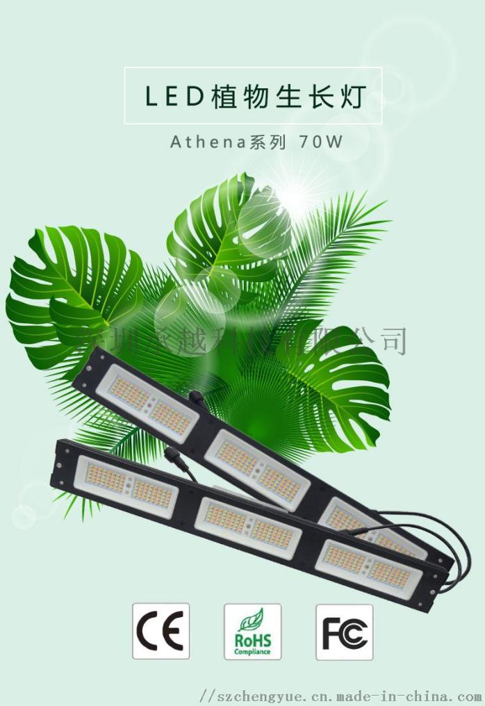 Athena系列70w植物灯_01.jpg