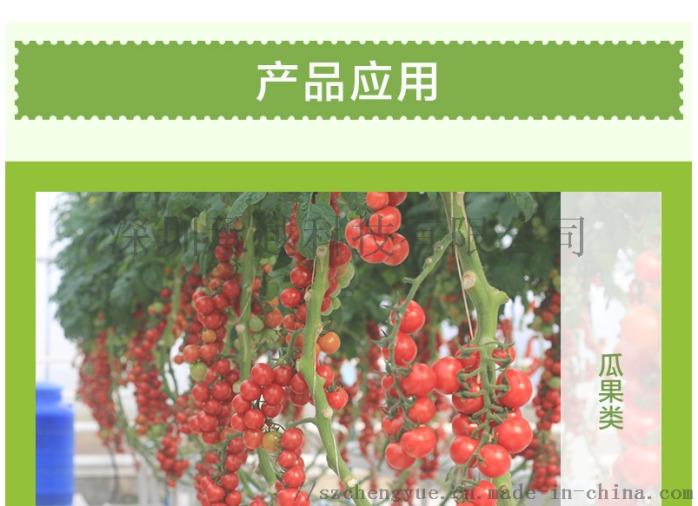 承越led植物生长灯大棚花卉瓜果种植补光灯厂家114492955