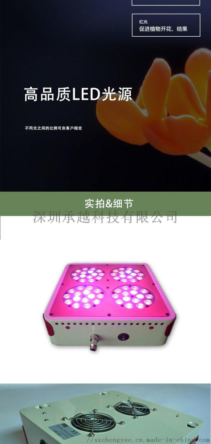 apollo-180W花卉补光灯大棚种植灯_04.jpg