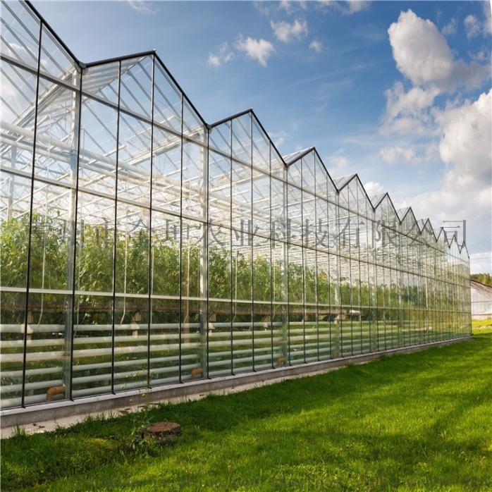 连栋玻璃温室1.jpg