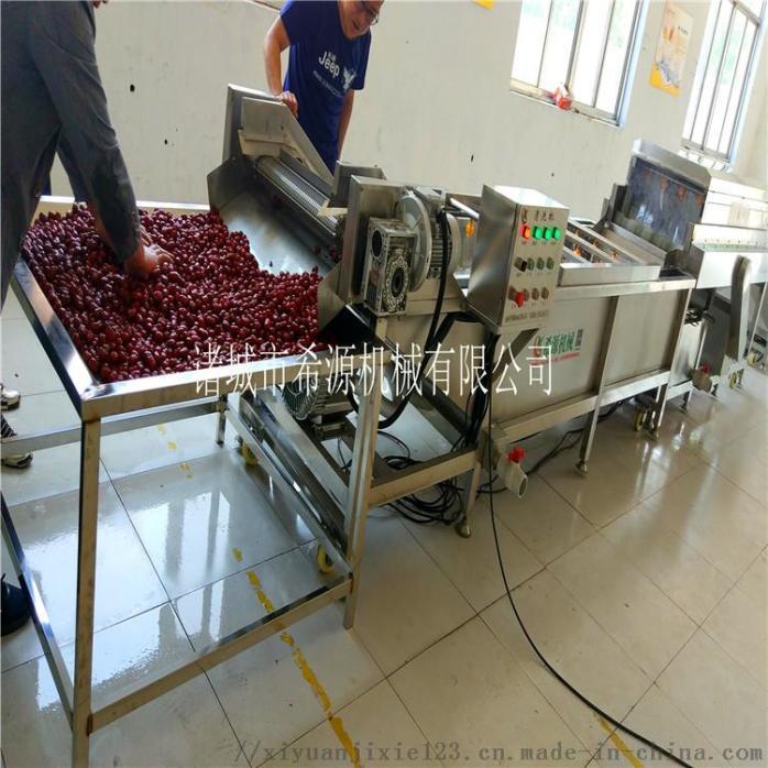 2020源头厂货 不锈钢草莓气泡清洗机 春季热销中833378642