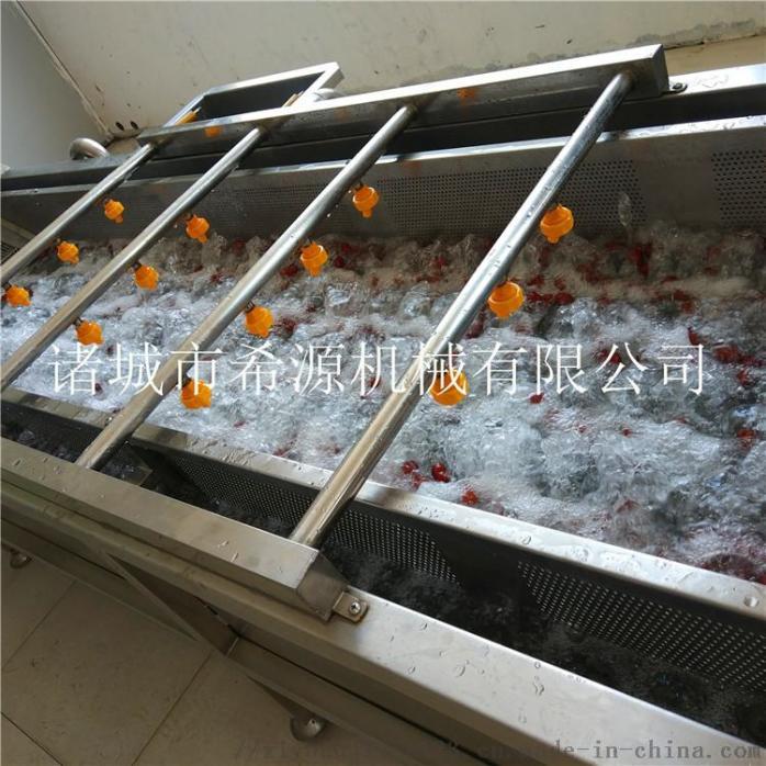 2020源头厂货 不锈钢草莓气泡清洗机 春季热销中833378632