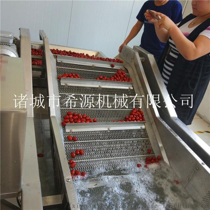 2020源头厂货 不锈钢草莓气泡清洗机 春季热销中833378612