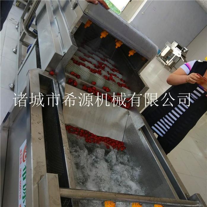 2020源头厂货 不锈钢草莓气泡清洗机 春季热销中833378622