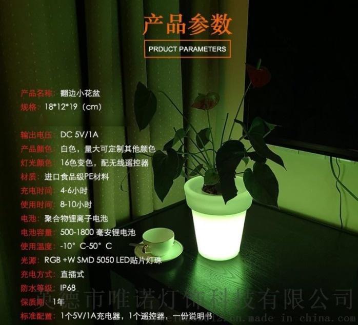 led背光創意浪漫廠家產地直銷爆款花盆3.jpg