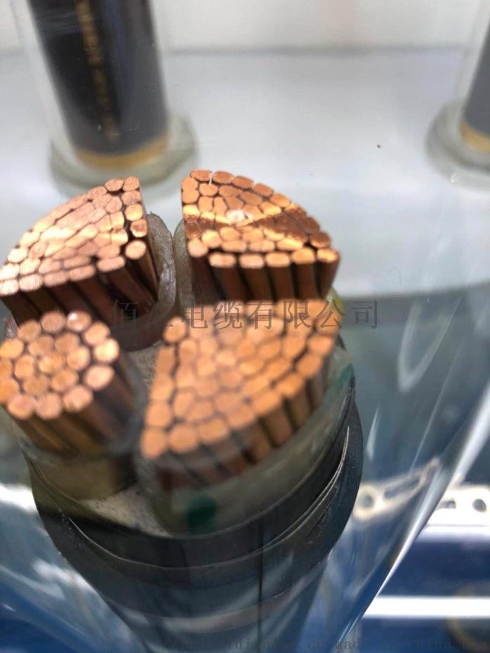 阻燃电缆1 (4).jpg
