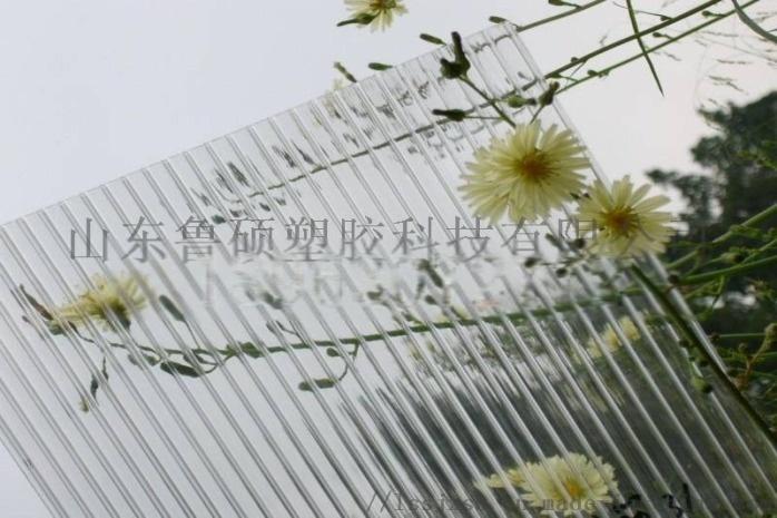 成武陽光板25.jpg