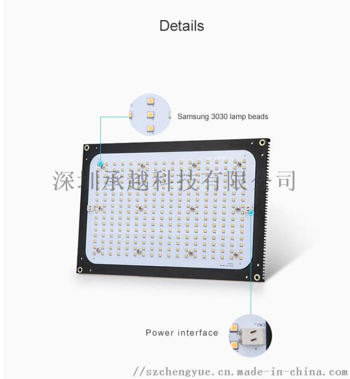 White fill light (4).jpg