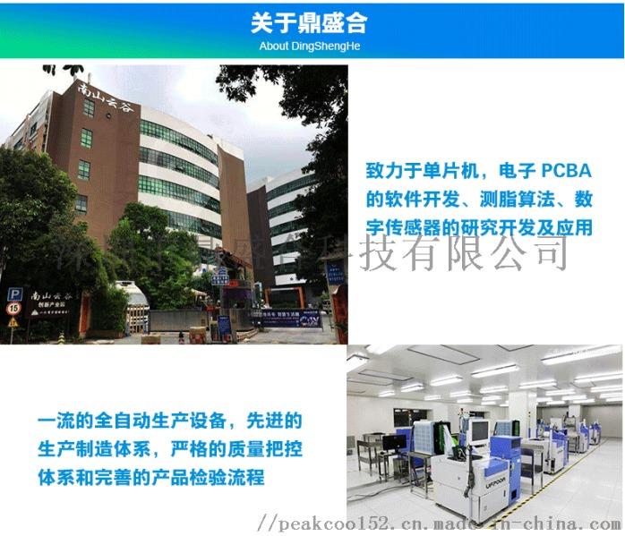 深圳鼎盛合科技提供胎壓計PCBA方案開發123762115