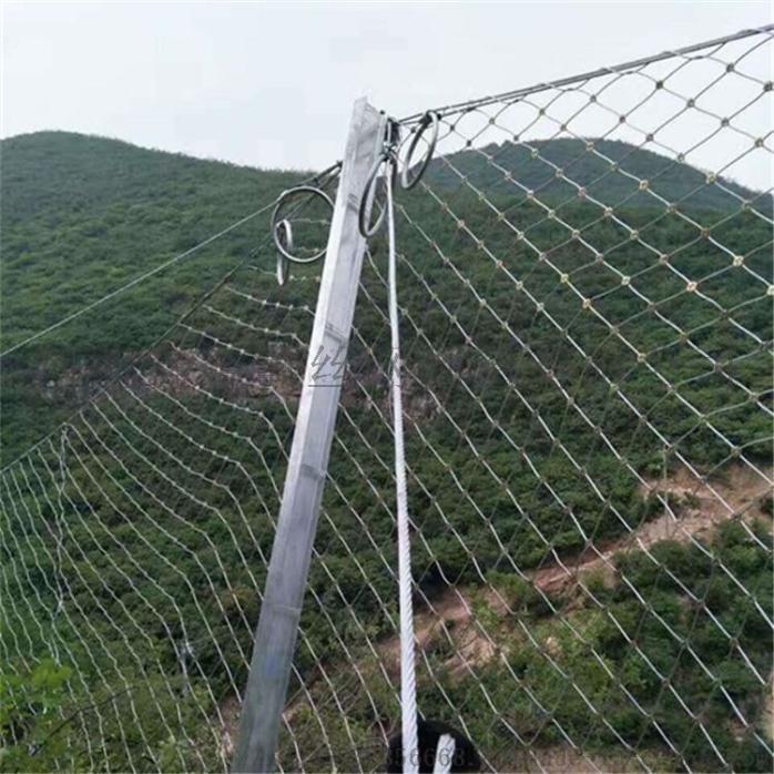 生态绿化被动网刚A平阳生态绿化被动网厂家直销127435275