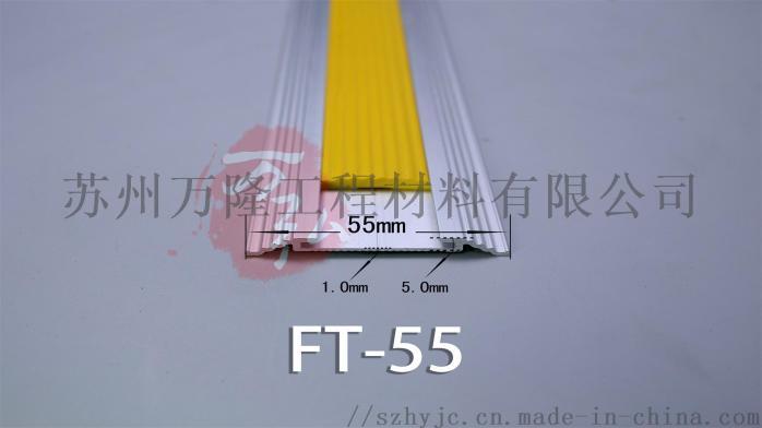 FT-55.jpg