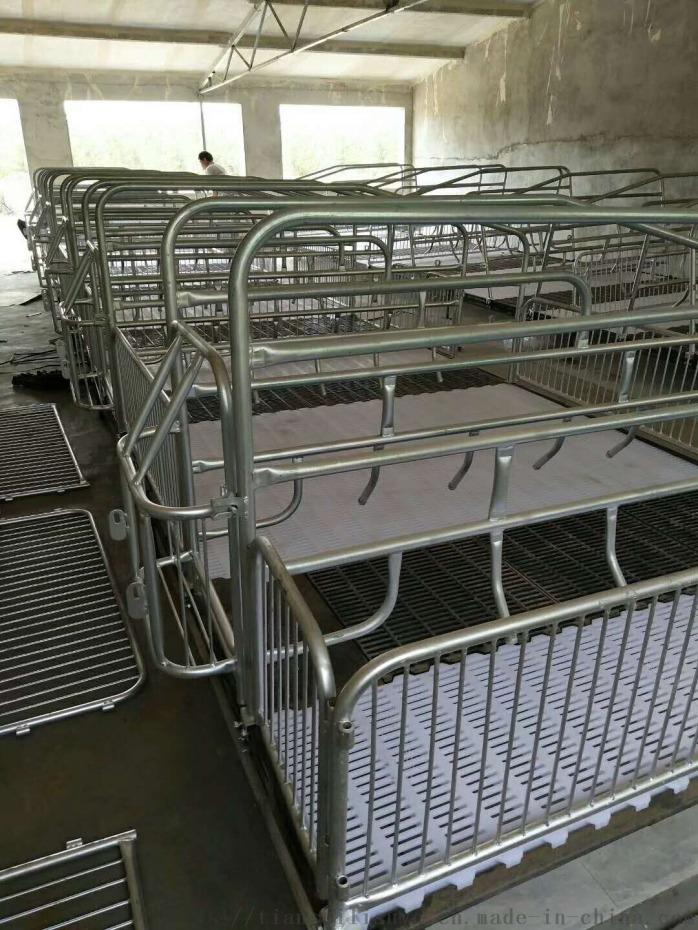 猪用漏粪板 母猪产床漏粪板 小猪保育床塑料漏粪板134116565