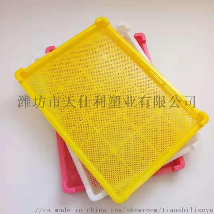 供应塑料单冻盘速冻盘烘干盘846531955