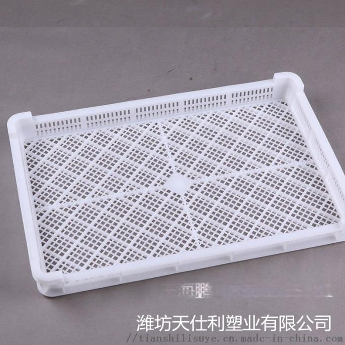 供应塑料单冻盘速冻盘烘干盘133548055