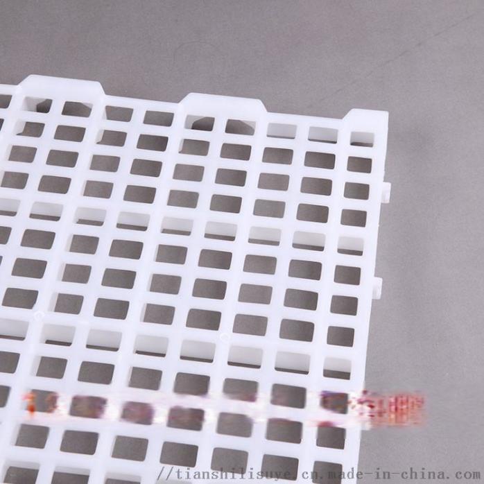 鸡舍漏粪板 塑料漏粪板 养鸡场漏粪板897944095