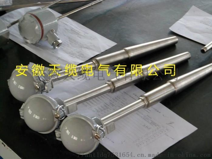 水泥厂窑炉专用耐磨热电偶/WZPK2426SA135390205