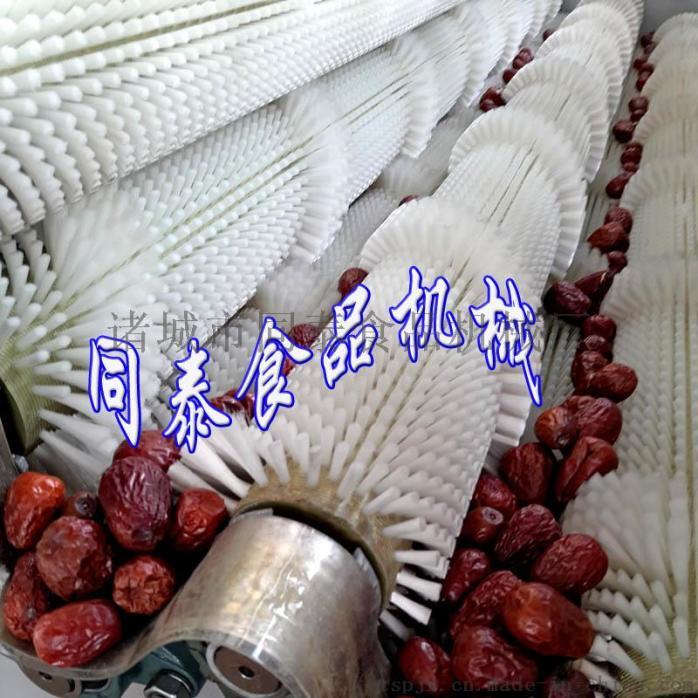 红枣清洗机1.jpg