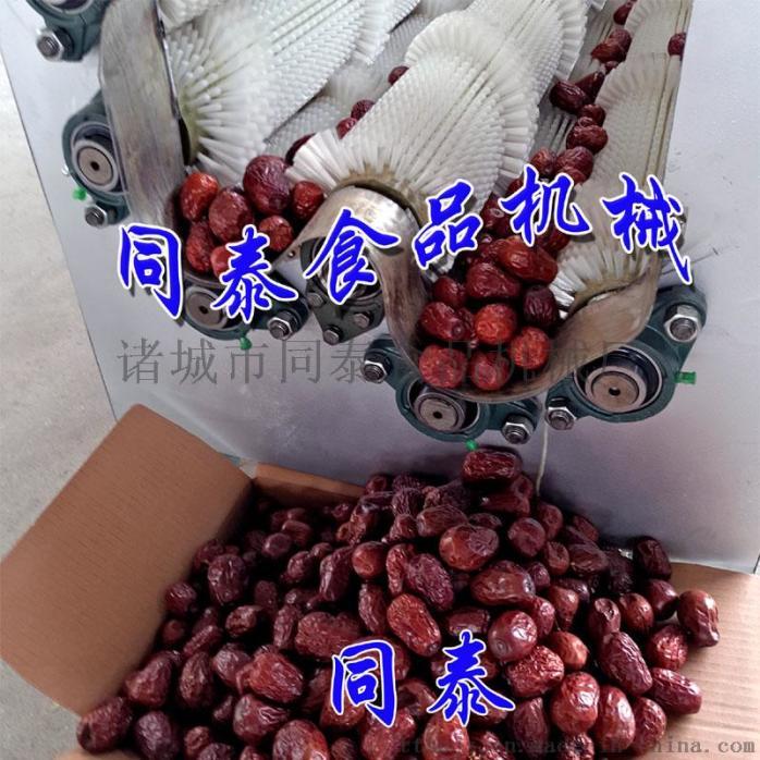 红枣清洗机.jpg