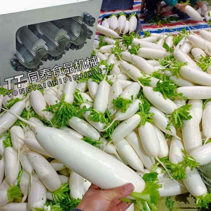 全自动白萝卜清洗机 毛刷洗萝卜机器866374862