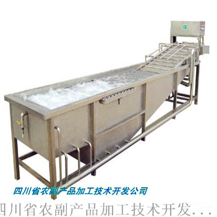 沙棘果粉设备,沙棘加工设备876671362