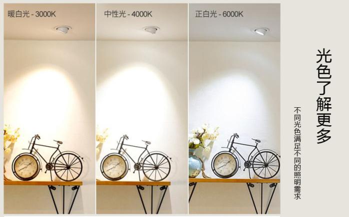 象鼻燈推廣光色圖片.jpg