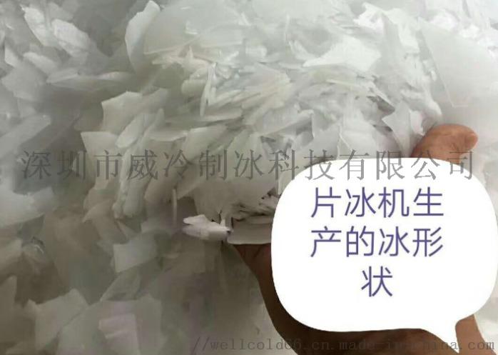 杭州酒店厨房用日产200公斤不锈钢外罩片冰机141090035