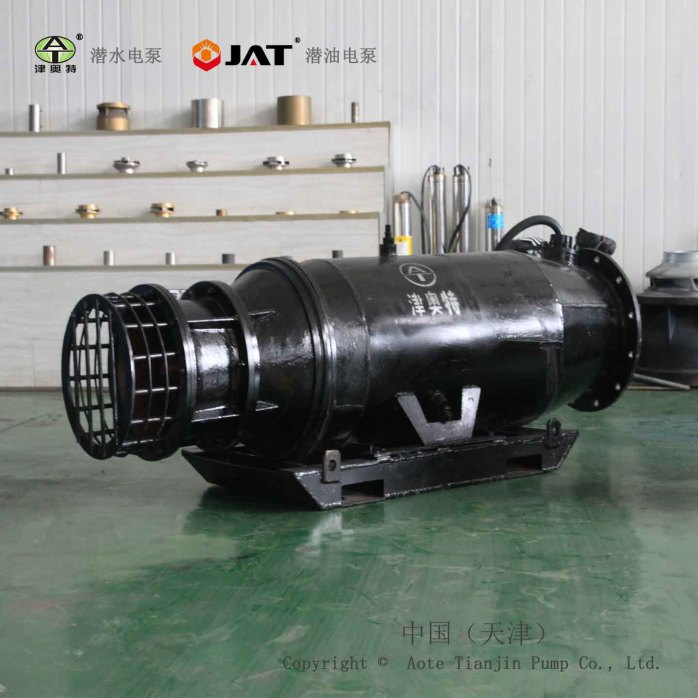 雪橇式潜水轴流泵-2.jpg