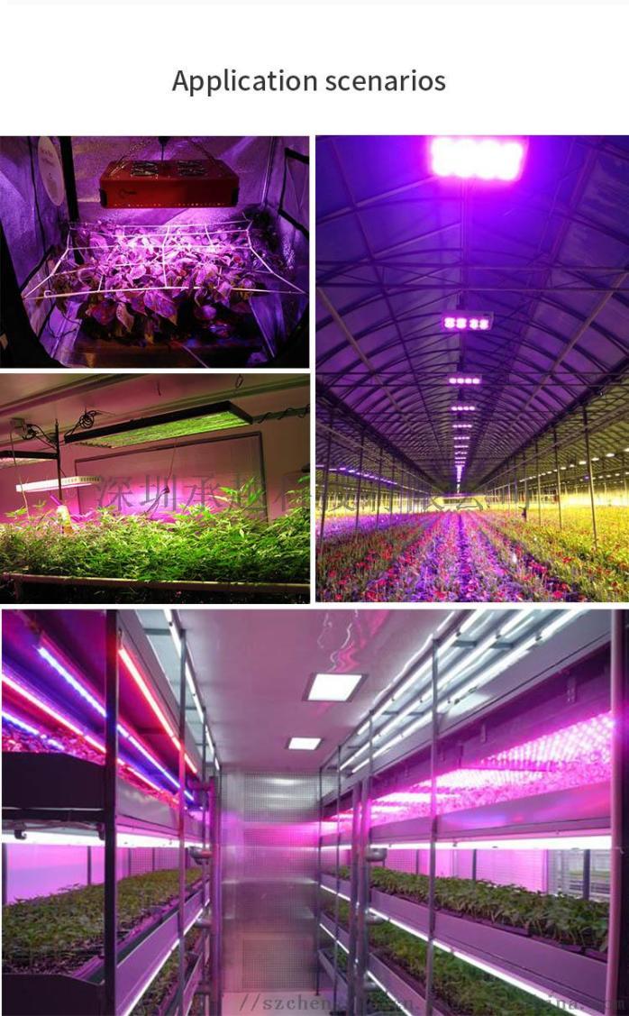 跨境货源厂家LED植物生长灯135927895