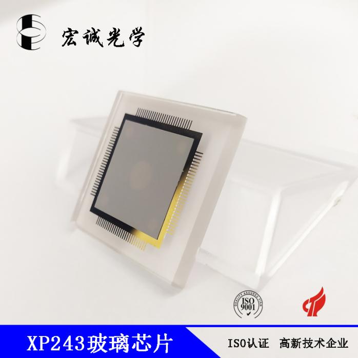 XP243玻璃芯片 (4).jpg