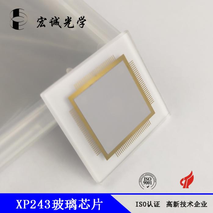 XP243玻璃芯片 (6).jpg