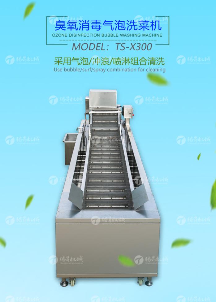 TS-X300臭氧消  泡洗菜机-改版(中文)_01.jpg