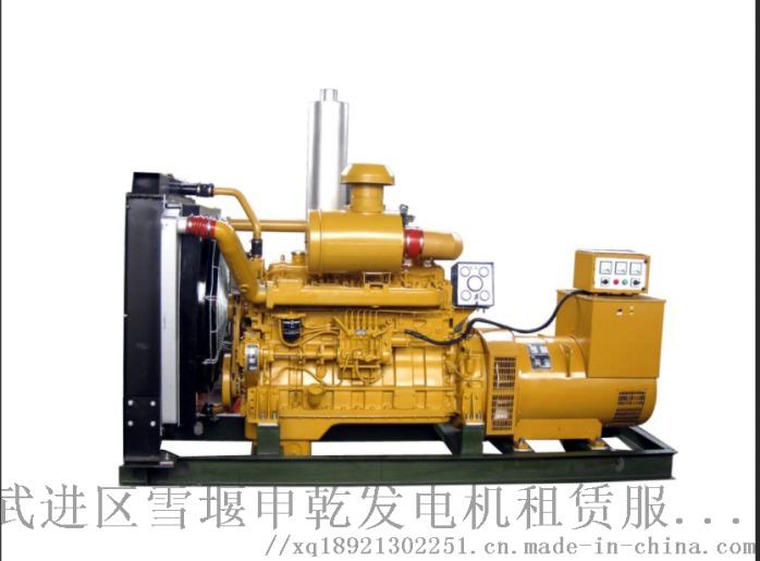 泰州租用柴油发电机出租、租赁服务871424012