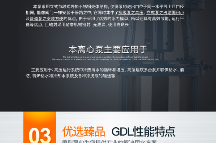 125GDL100_08
