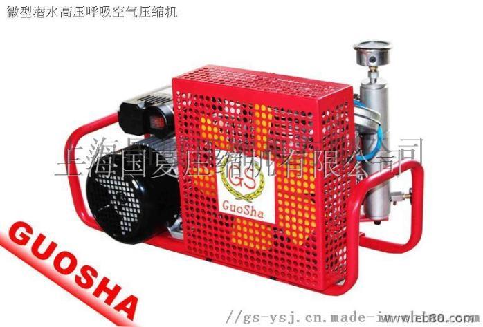 30MPA小型高压空气压缩机789515455