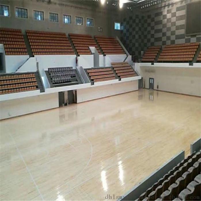 桦木AB篮球馆3
