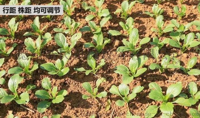 人力播種機 蔬菜播種機 白菜 菠菜精播機61128642