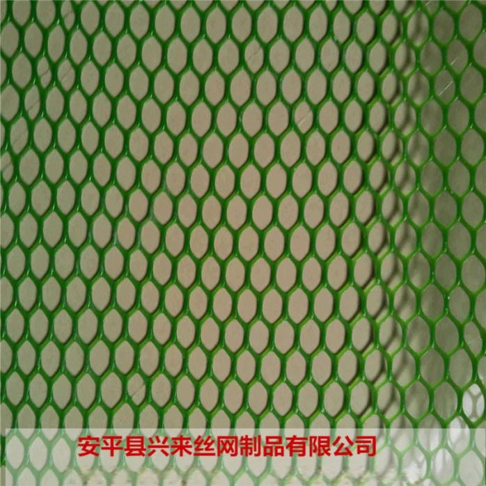 塑料平网 (8).jpg