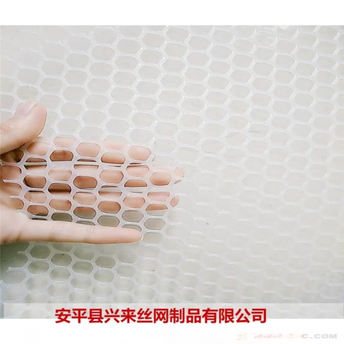 塑料平网 (18).jpg