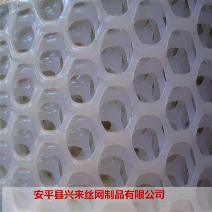 塑料平网 (37).jpg