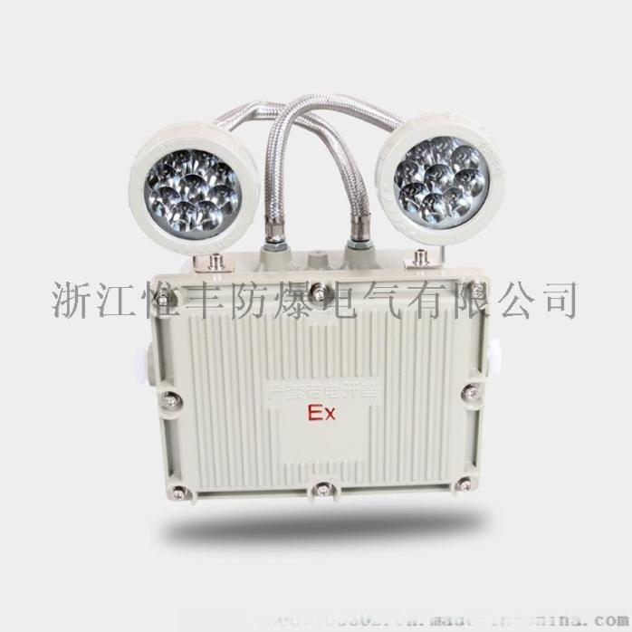BCJ52双头应急灯-01